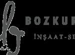 bozkurtlar_templatemo_logo